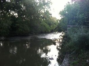 The river in the park near our new apartment.
